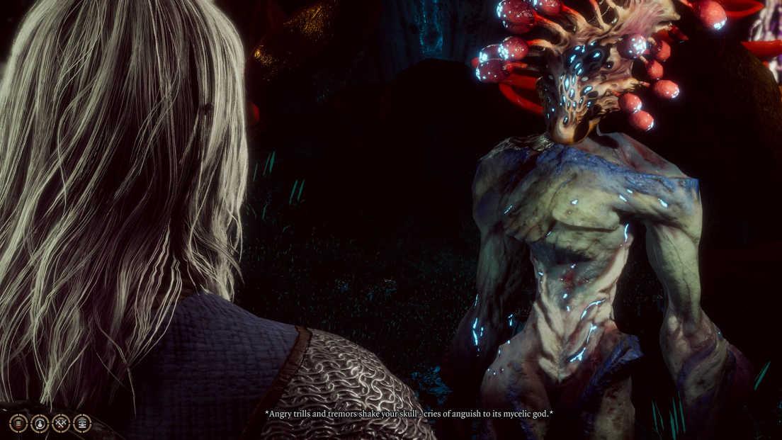 Baldur's Gate 3 screenshot 3