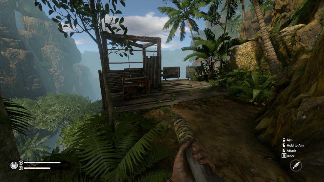 Green Hell screenshot 1